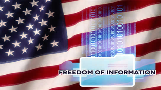 FREEDOM OF INFORMATION ACT (FOIA) SUPPORT SERVICES